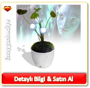 Ledli Avatar Mantar Çiçeği