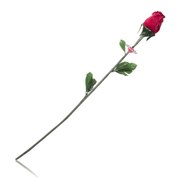 Bayana hediye çiçek