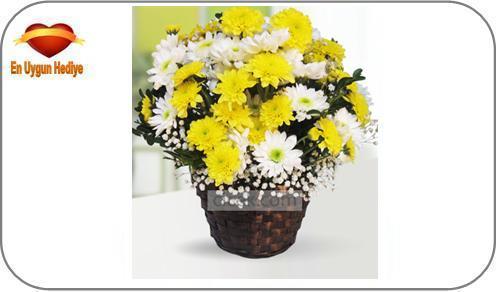 öğretmene alınabilecek çiçek