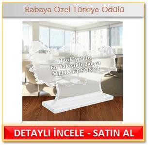 Babaya Özel Türkiye Ödülü