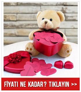 Sevimli Ayıcığın Sana 100 Aşk Mesajı Var